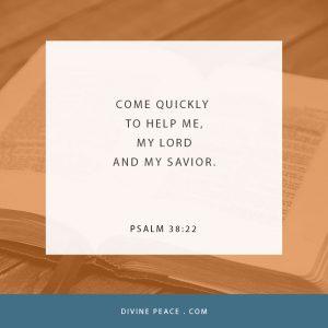 Psalm 38 22