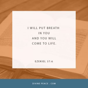 Ezekiel 37:6