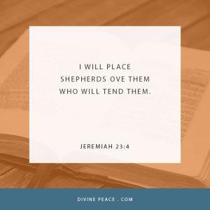 Jeremiah 23 4